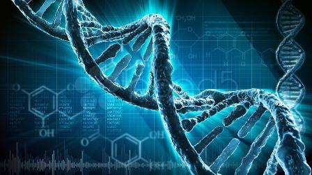 La investigación mediante ADN: derecho a la intimidad y derecho de defensa